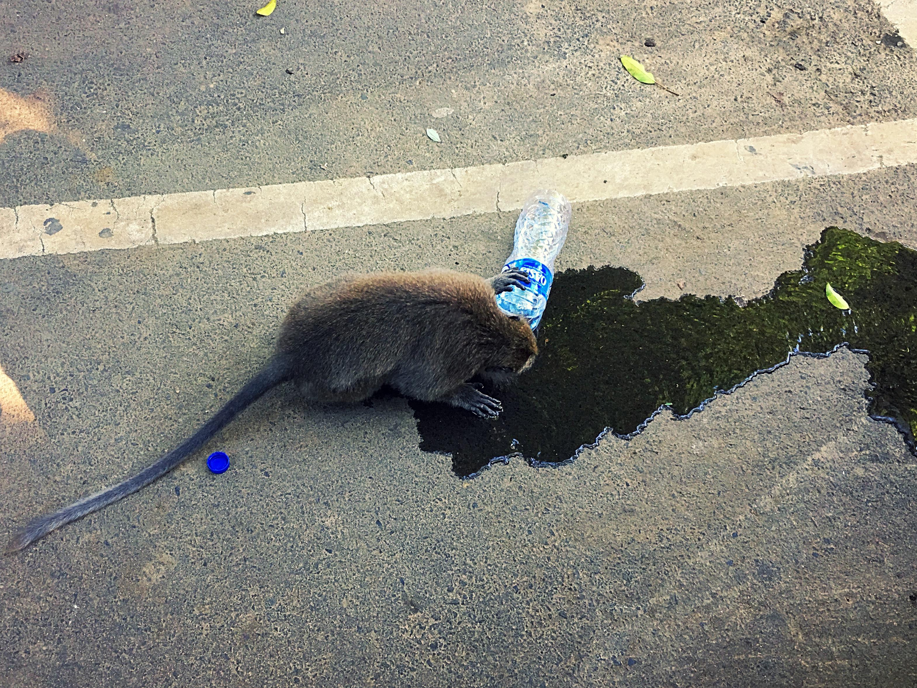 Lecker unser Wasser